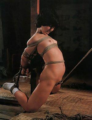 Asian Fetish Butts Pics